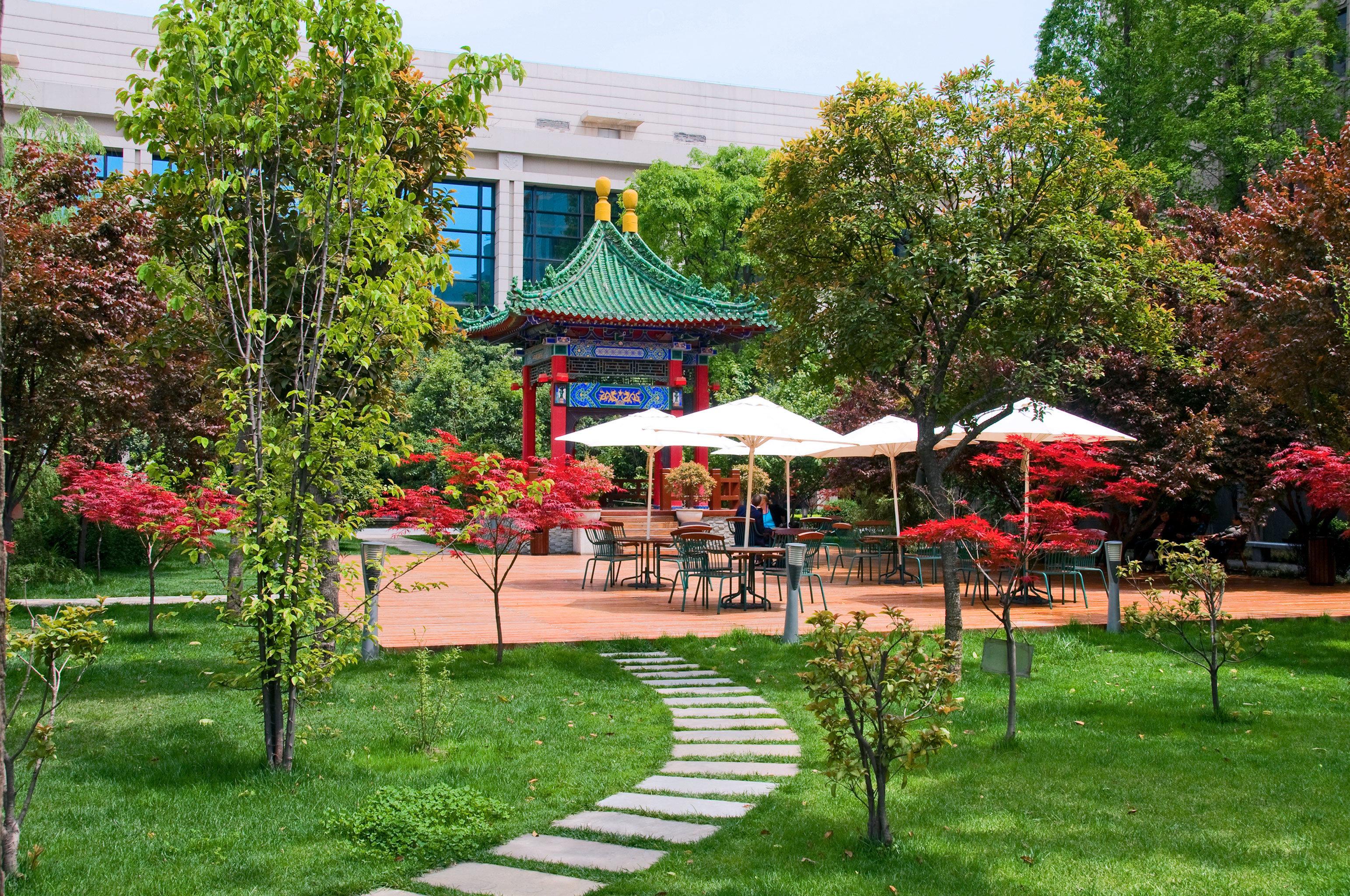 Grounds Outdoors Patio Resort Scenic views grass tree lawn Garden flower backyard yard park cottage grassy lush