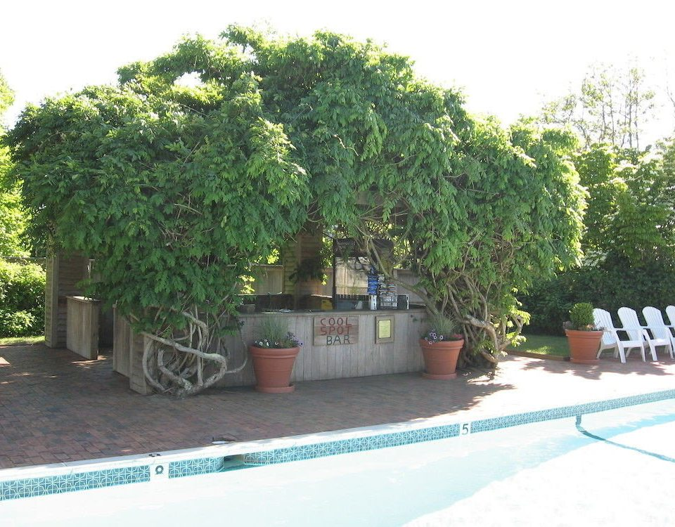 Garden Grounds Pool tree property plant woody plant land plant shrub food