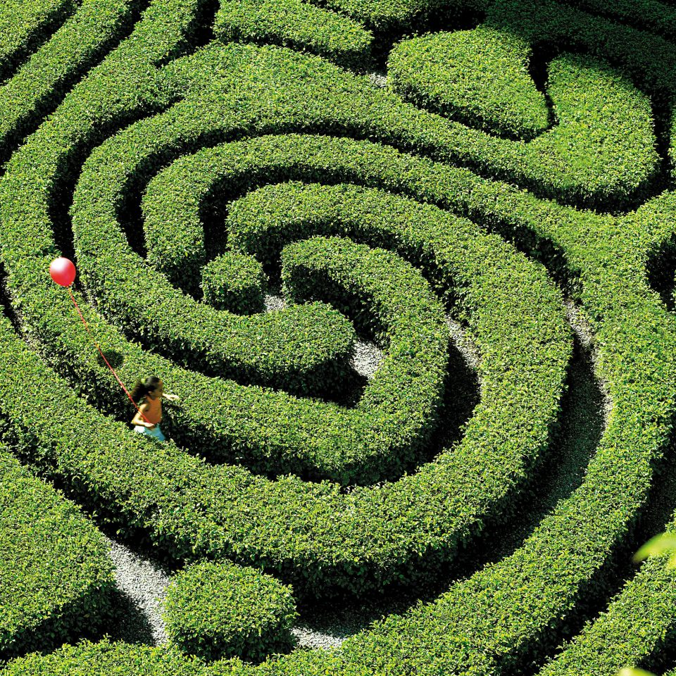 Garden Grounds Romantic grass plant green field agriculture botany soil maze outdoor structure plantation labyrinth shrub light crop lawn flooring day