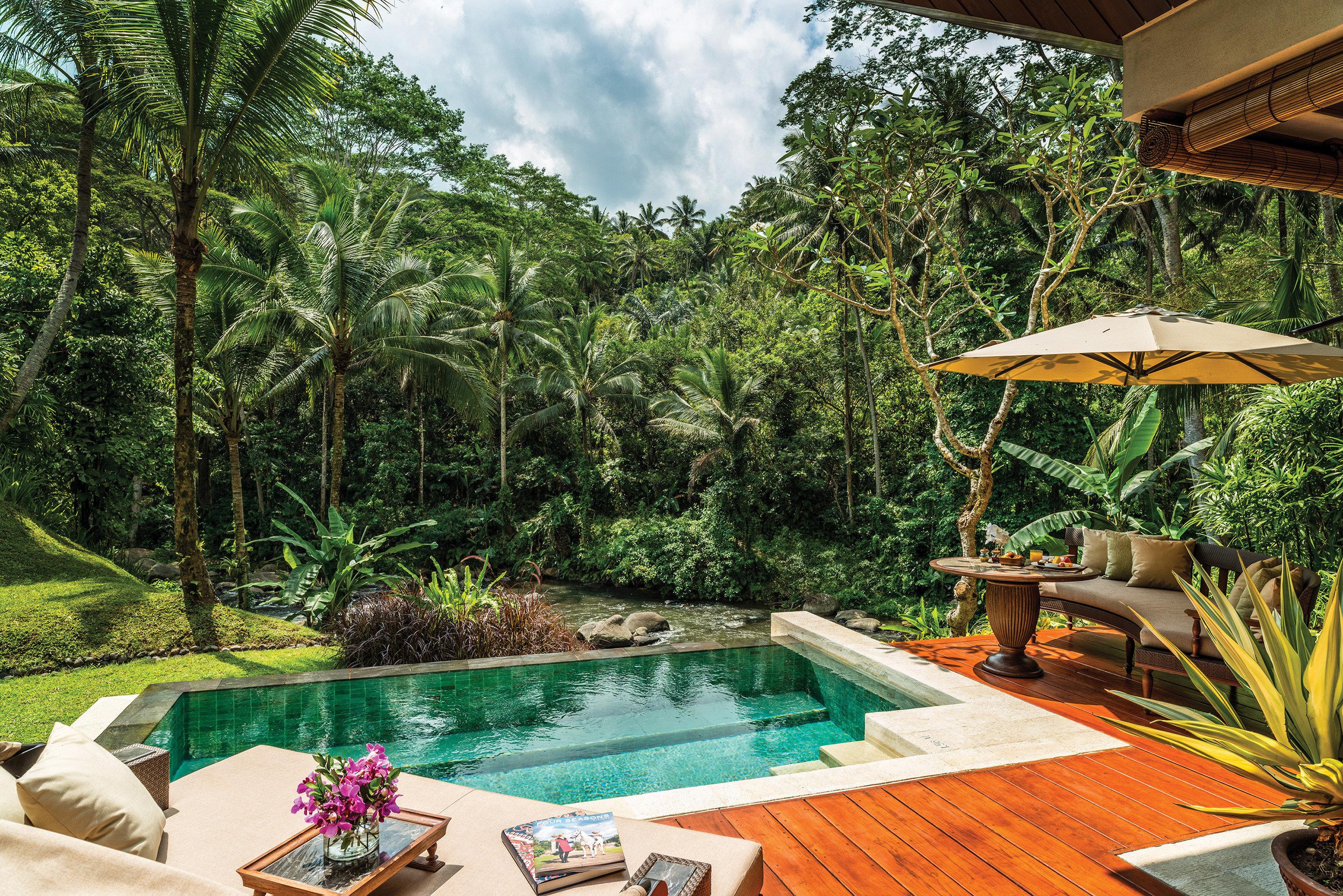 Honeymoon Jungle Luxury Offbeat Pool Romance Trip Ideas tree swimming pool property Resort backyard Villa eco hotel Garden colorful