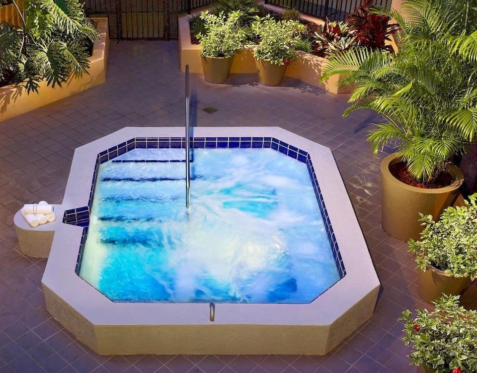 Hot tub/Jacuzzi Lounge Luxury Pool plant tree swimming pool backyard jacuzzi Hot tub Garden