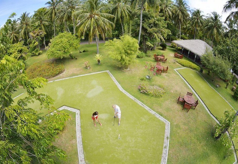 tree grass structure sport venue aerial photography plant golf course Garden Jungle golf club