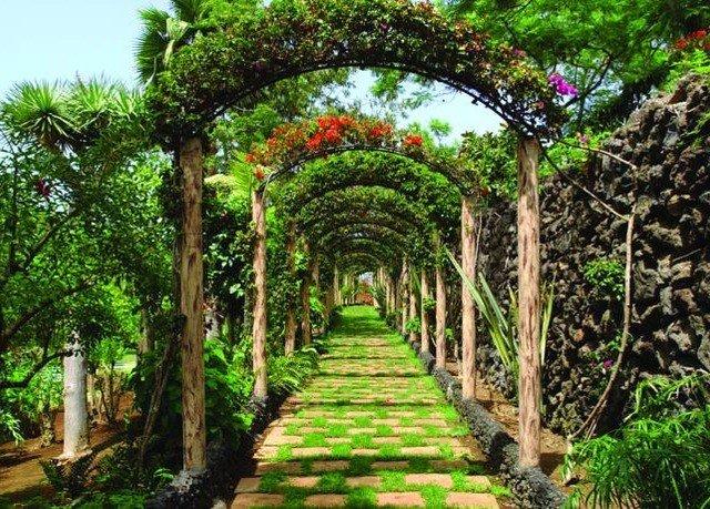 tree Garden arch botany flower botanical garden Jungle plant outdoor structure shrub hacienda bushes walkway surrounded