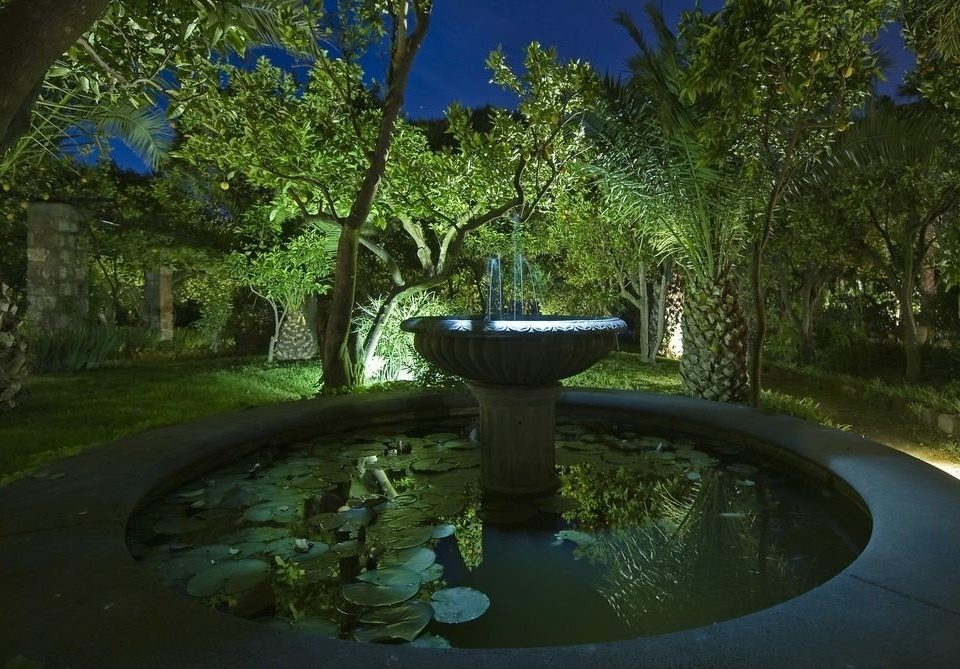 tree green ecosystem water botany pond Garden backyard swimming pool flower landscape lighting screenshot water feature Jungle plant