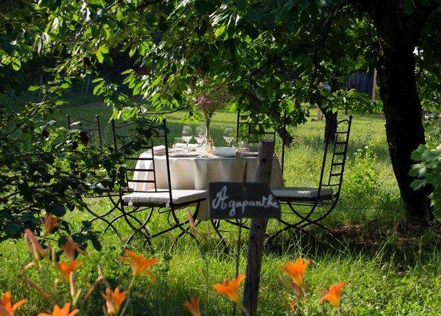 tree grass orange backyard Garden yard flower outdoor structure cottage lawn meadow woodland Jungle