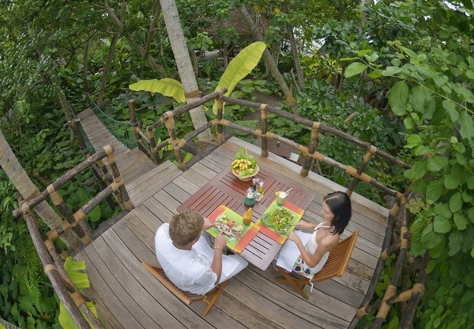 tree backyard Jungle Garden rainforest yard plant
