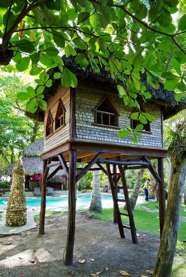 tree botany house Garden outdoor structure flower cottage Jungle tree house shrine shade