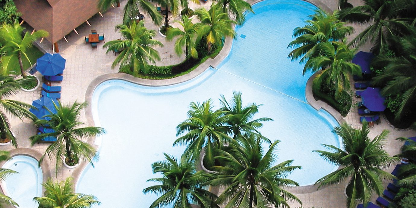 Outdoors Play Pool Resort tree plant palm ecosystem arecales condominium swimming pool Jungle caribbean Garden tropics bushes porcelain