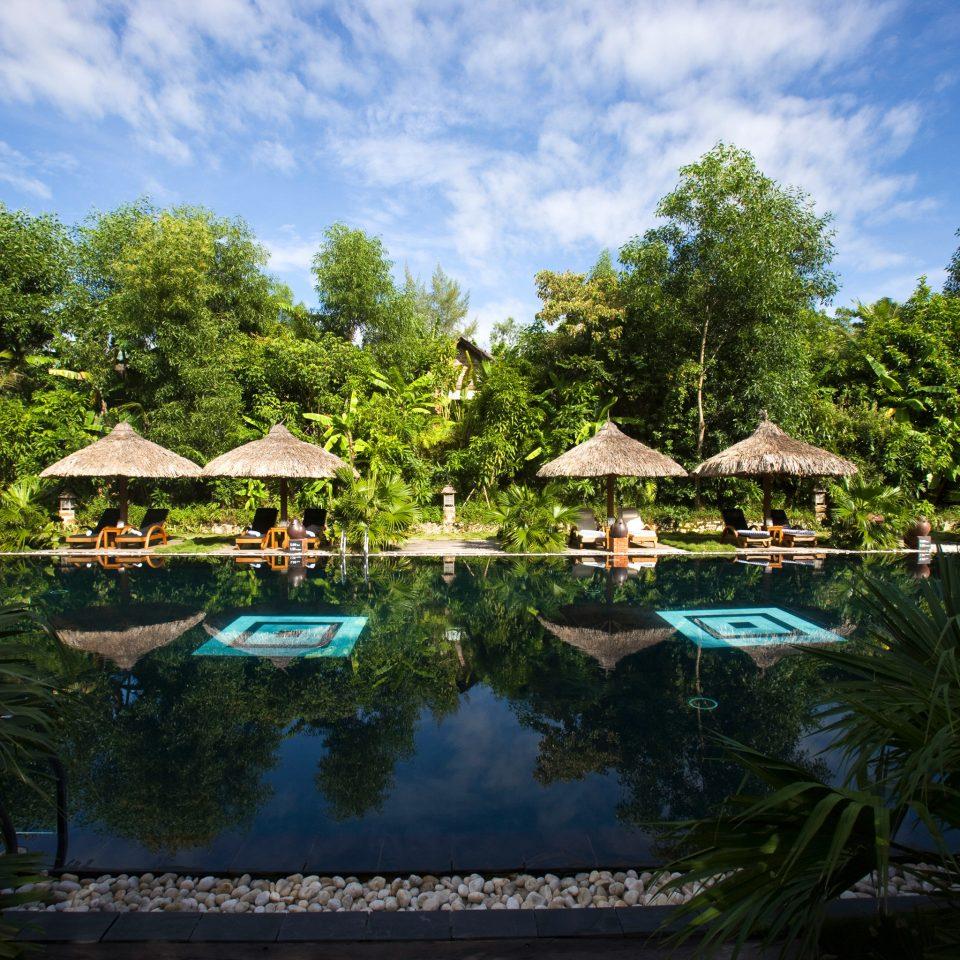 Jungle Pool Resort tree sky swimming pool Garden mansion tropics pond backyard botanical garden surrounded day