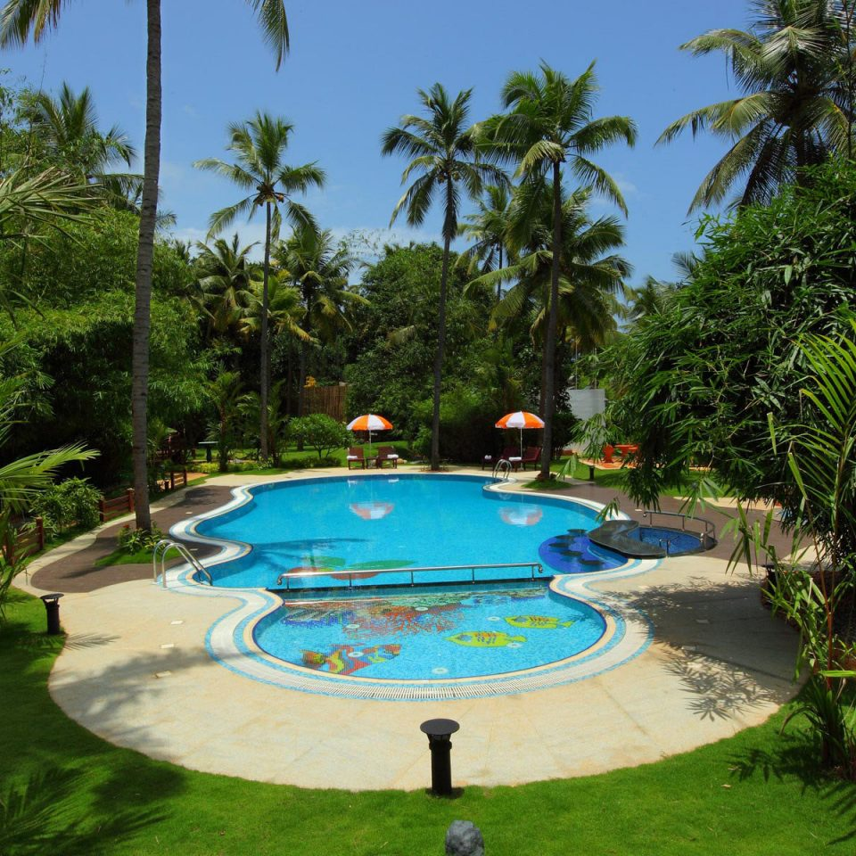 tree palm swimming pool leisure Resort Pool backyard plant Jungle Villa Garden tropics Water park lined