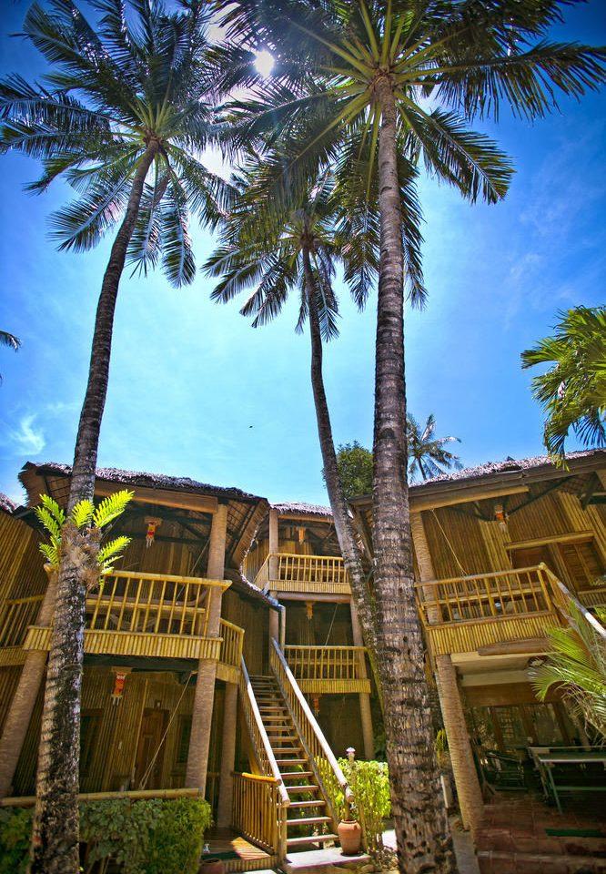 tree palm sky plant Resort house arecales palm family Jungle flower tropics temple travel Garden shade
