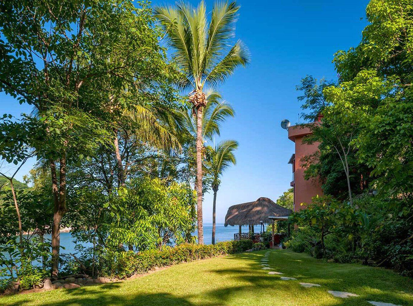tree grass plant arecales woody plant Garden Jungle tropics biome plantation Resort mansion botanical garden lush
