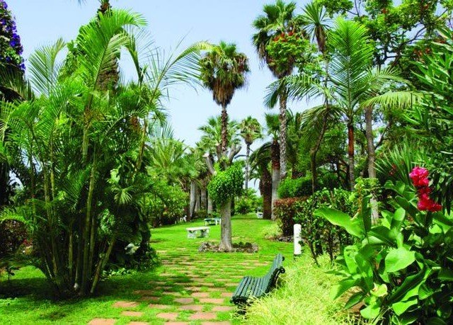tree grass park plant vegetation ecosystem botany Resort Jungle rainforest arecales tropics plantation palm family Garden flower botanical garden palm shade lush