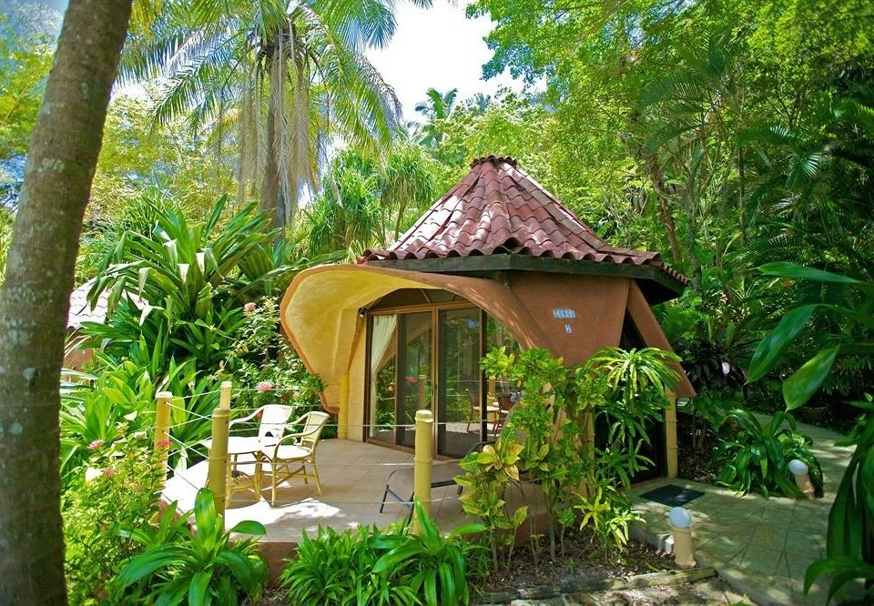 tree building botany Resort Jungle Garden house rainforest outdoor structure gazebo cottage backyard eco hotel botanical garden plant shade