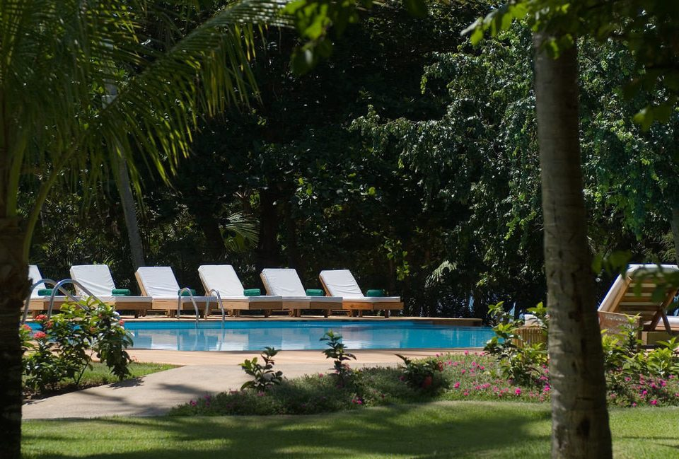 tree grass park swimming pool botany backyard Garden plant Resort yard Jungle botanical garden shade