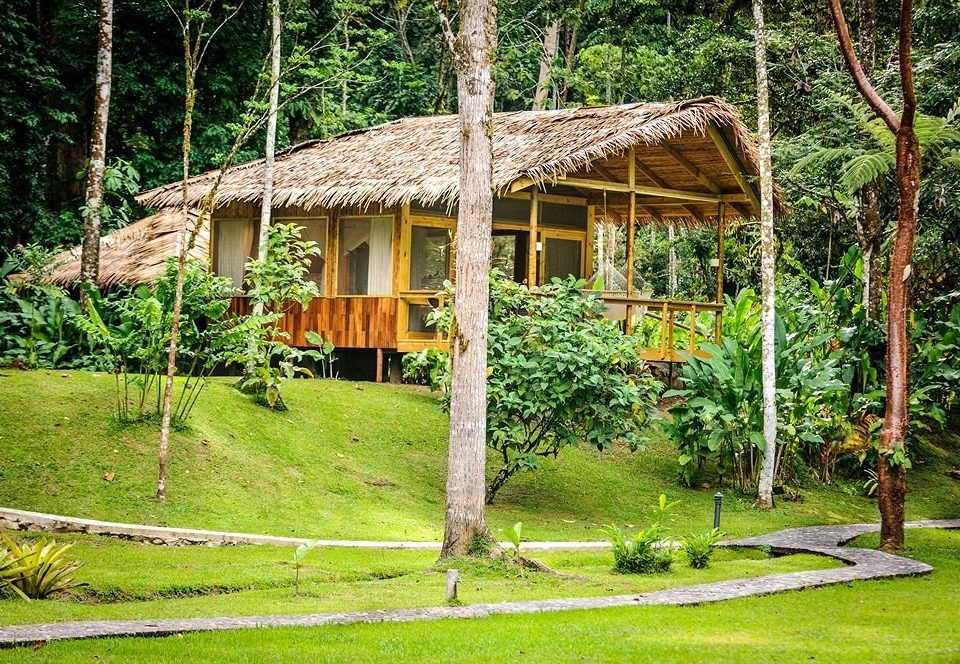 tree grass building rural area outdoor structure Jungle log cabin backyard hut Resort Garden cottage lush