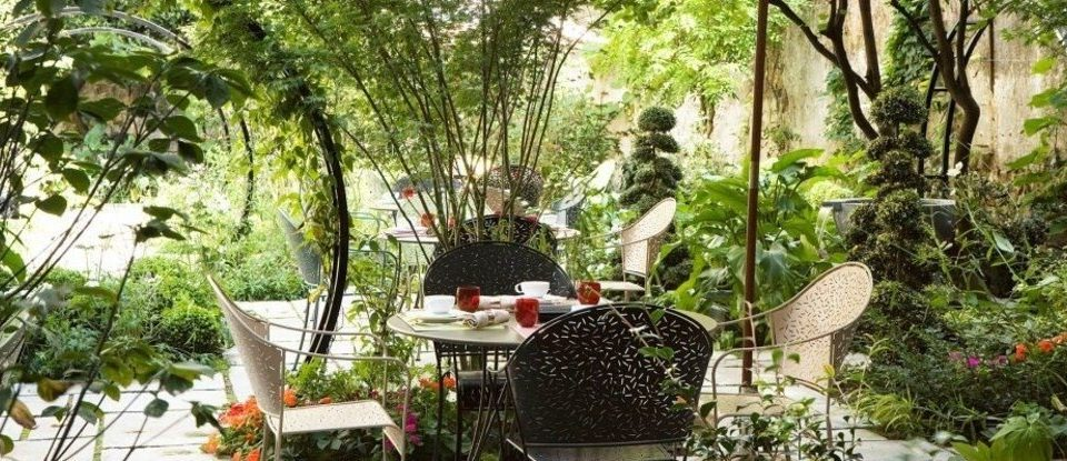 tree botany plant Garden floristry flower Resort backyard Jungle botanical garden