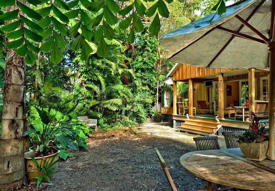 ground Resort Jungle backyard cottage Garden outdoor structure yard
