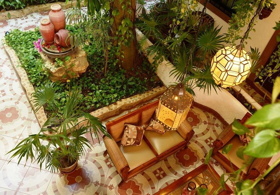 plant backyard Jungle Resort christmas decoration Garden surrounded