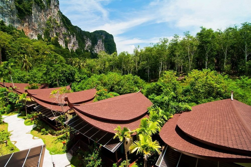 tree ecosystem Resort Garden Jungle flower surrounded