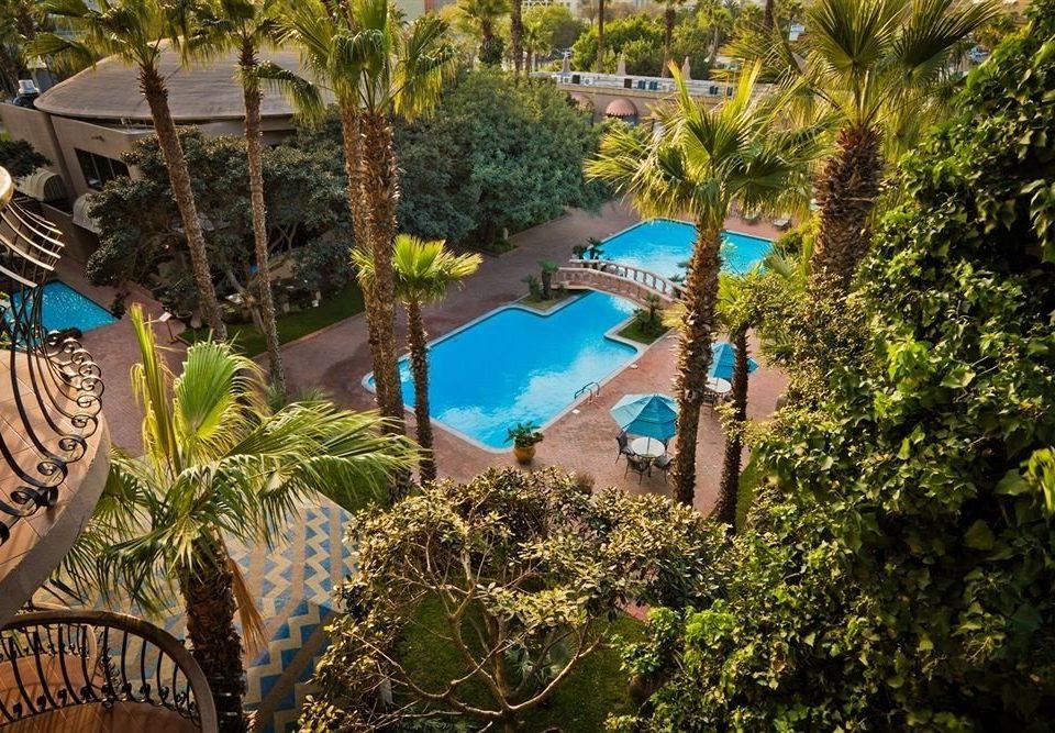 tree leisure Resort plant Jungle Garden swimming pool