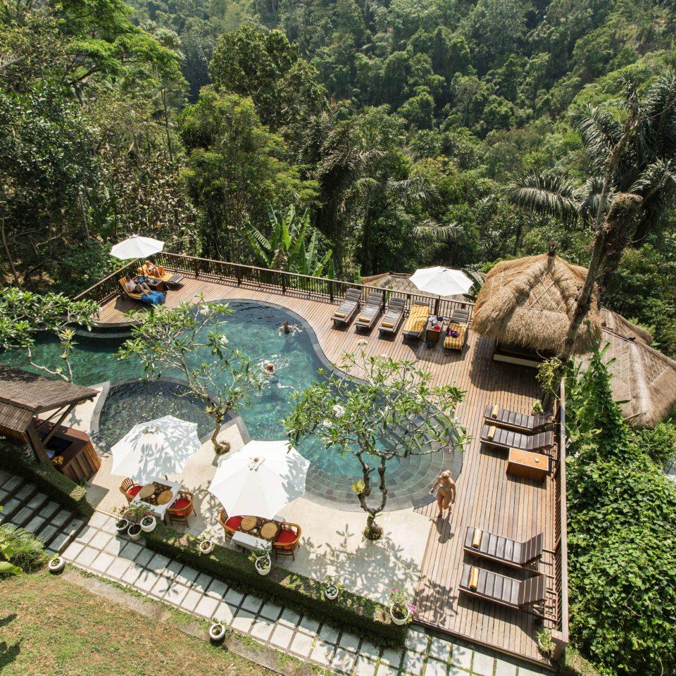 tree Garden Resort Jungle