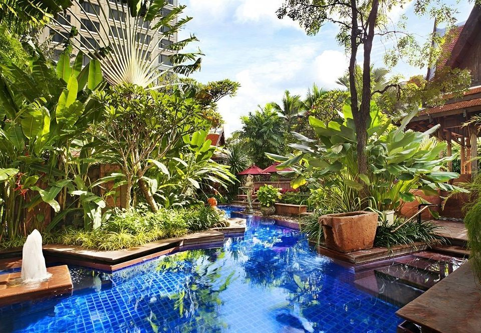 tree swimming pool property Resort backyard Garden Jungle Villa eco hotel pond