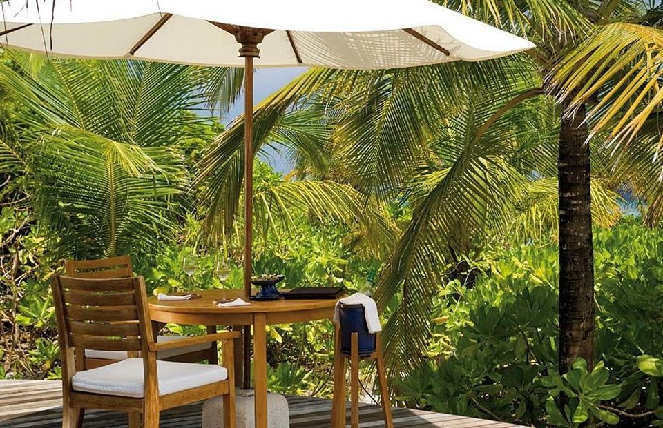 tree property chair Resort outdoor structure eco hotel Jungle arecales Garden Villa cottage plant palm dining table