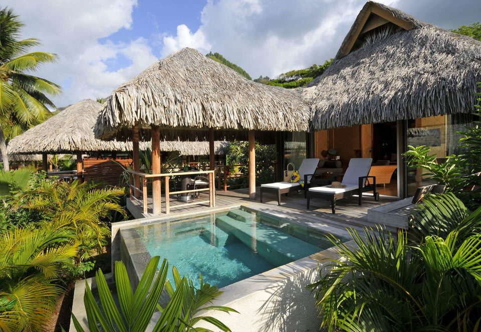 tree building Resort plant swimming pool leisure property Villa Garden eco hotel roof backyard caribbean cottage Jungle hut palm bushes surrounded