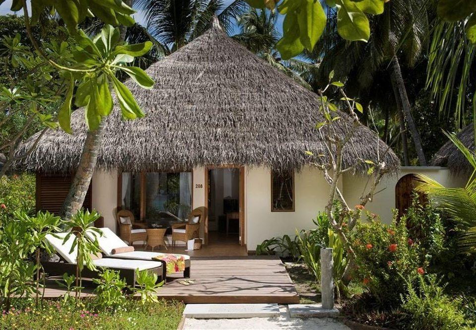 tree plant Resort house hut Jungle cottage Village home Garden restaurant tropics flower Villa