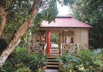 tree building property Resort house cottage Villa eco hotel outdoor structure Jungle Garden