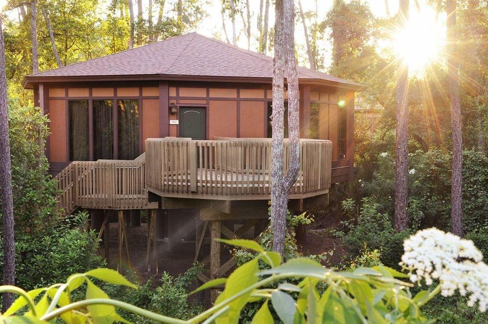 tree gazebo house backyard cottage home outdoor structure hut yard porch Resort Garden log cabin shed Villa Jungle surrounded