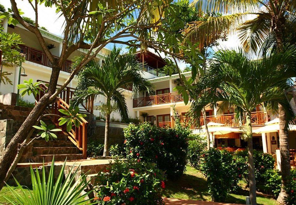 tree Resort property plant palm arecales Villa home hacienda Jungle eco hotel condominium tropics Garden shade lined