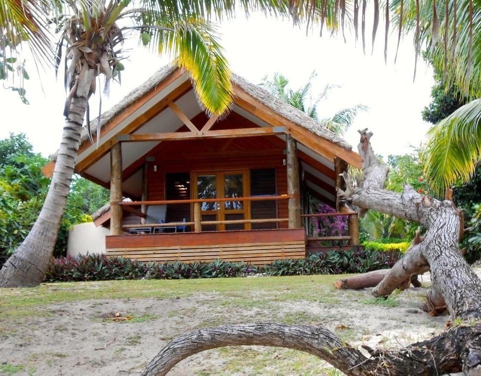 tree plant property Resort home cottage Jungle hut Villa Garden trunk