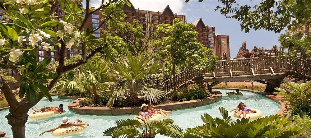 tree swimming pool property Resort mansion Garden Villa Jungle hacienda botanical garden backyard plant