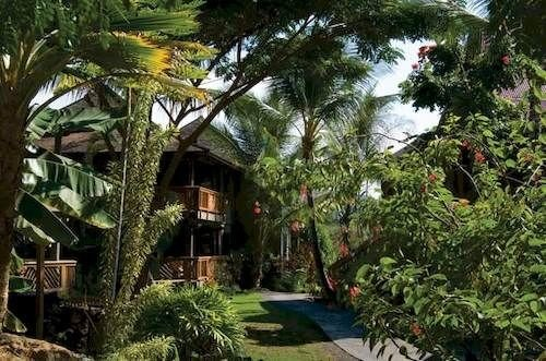 tree plant property Resort street palm Jungle rainforest eco hotel Villa arecales Garden cottage hacienda residential lined bushes