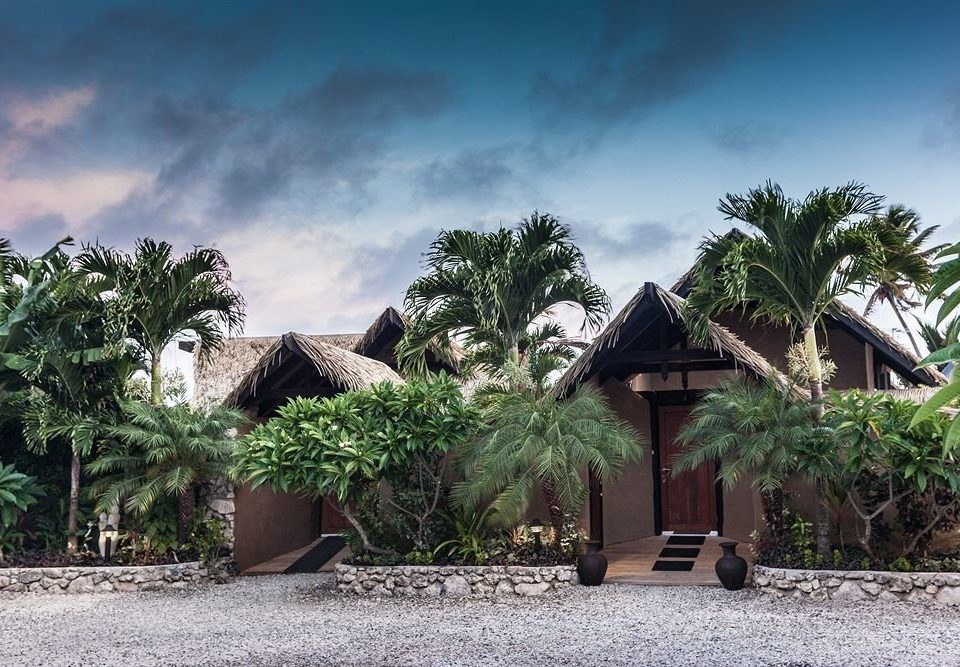 tree ground Resort house arecales tropics Village palm family flower Jungle Garden plant stone palm dirt bushes sandy