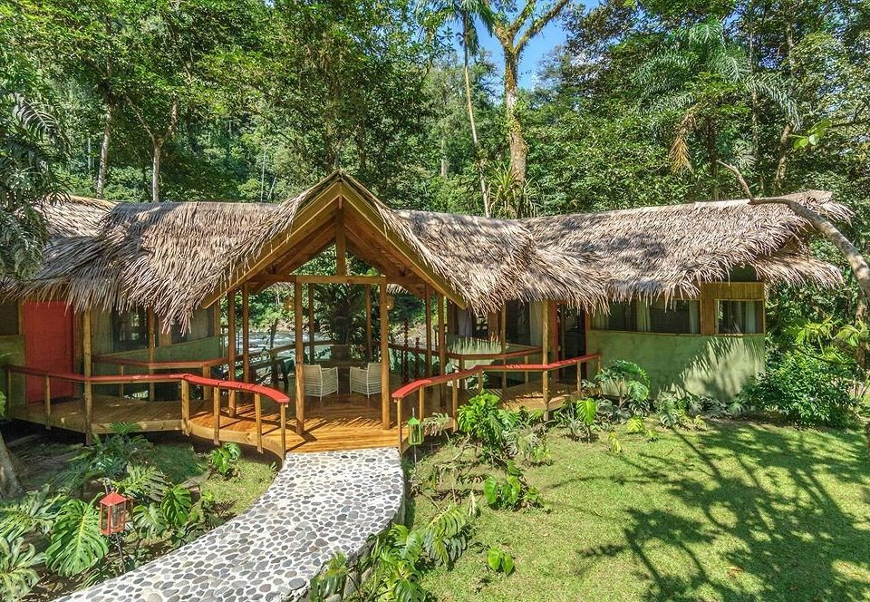 tree grass building property Resort house green cottage hut Jungle eco hotel Village Garden lush