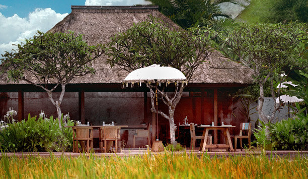building grass property hut cottage house hacienda thatching rural area home eco hotel roof Resort outdoor structure Village Jungle landscape tree plantation Garden