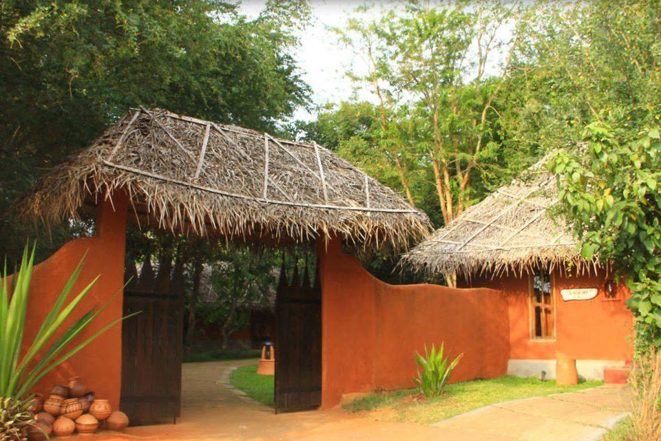tree property hut thatching Resort hacienda Jungle eco hotel Village cottage orange Garden