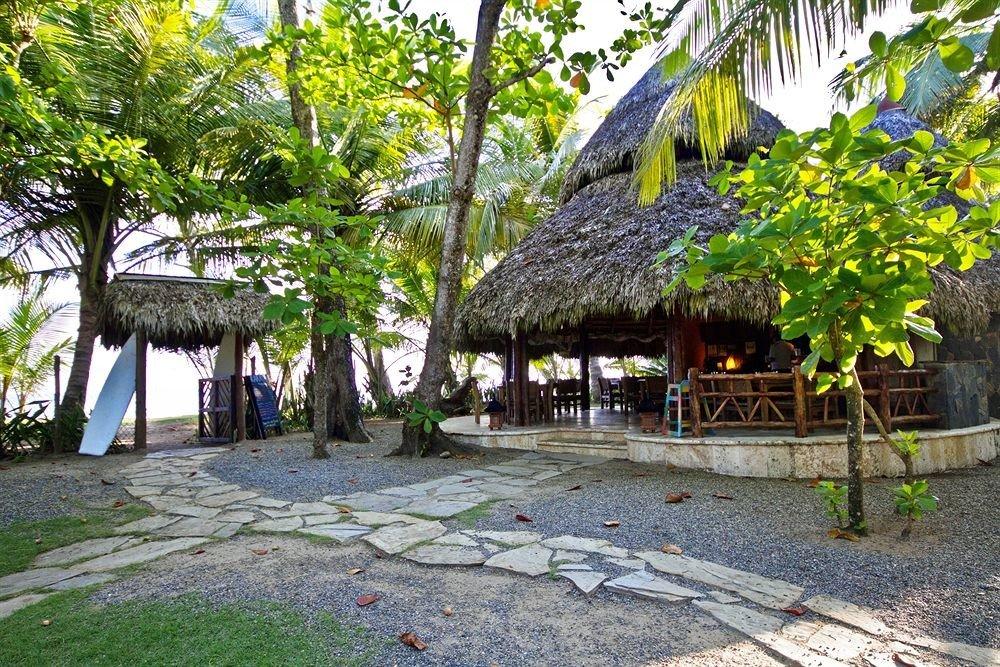 tree ground plant Resort Village Jungle cottage Garden palm shade