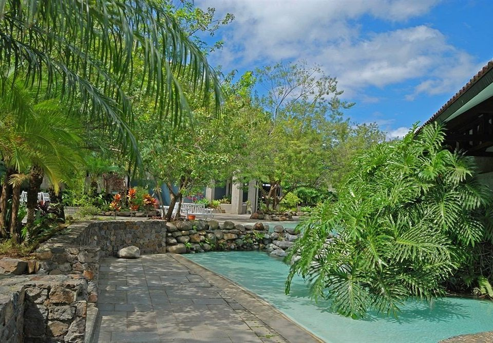 tree Resort arecales plant Garden walkway swimming pool Jungle Village palm stone