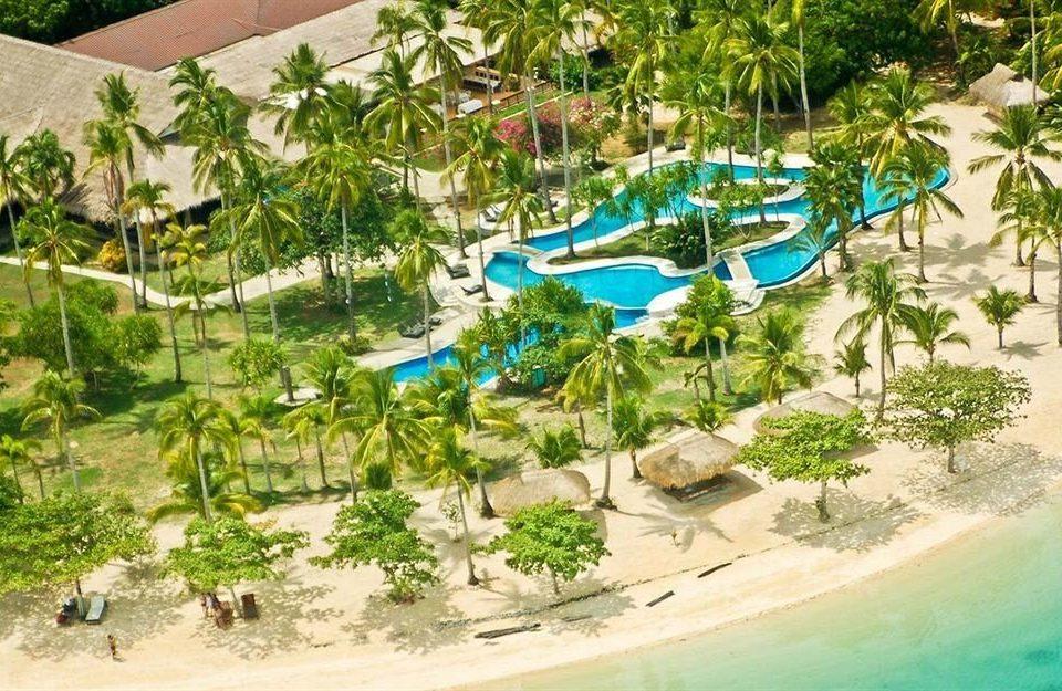 tree ground Water park leisure amusement park Resort swimming pool plant park Jungle blue Garden colorful