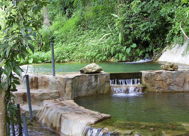 tree watercourse pond Waterfall River stream water feature fish pond Jungle Garden rainforest surrounded