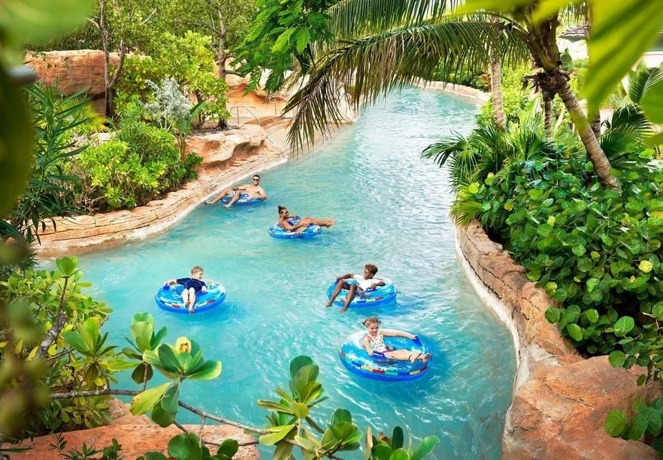tree water swimming pool leisure water resources Resort Water park watercourse plant water feature Lagoon tropics amusement park recreation resort town fun Garden surrounded