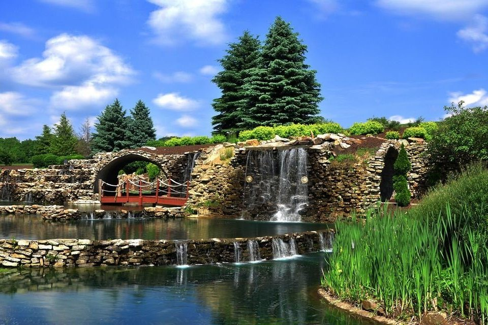 sky tree grass pond water Nature Lake Garden water feature waterway reservoir flower stone