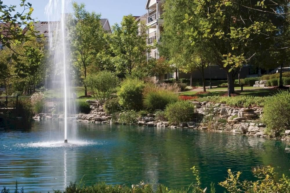 tree water Lake Nature watercourse pond water feature reflecting pool Garden park fountain surrounded