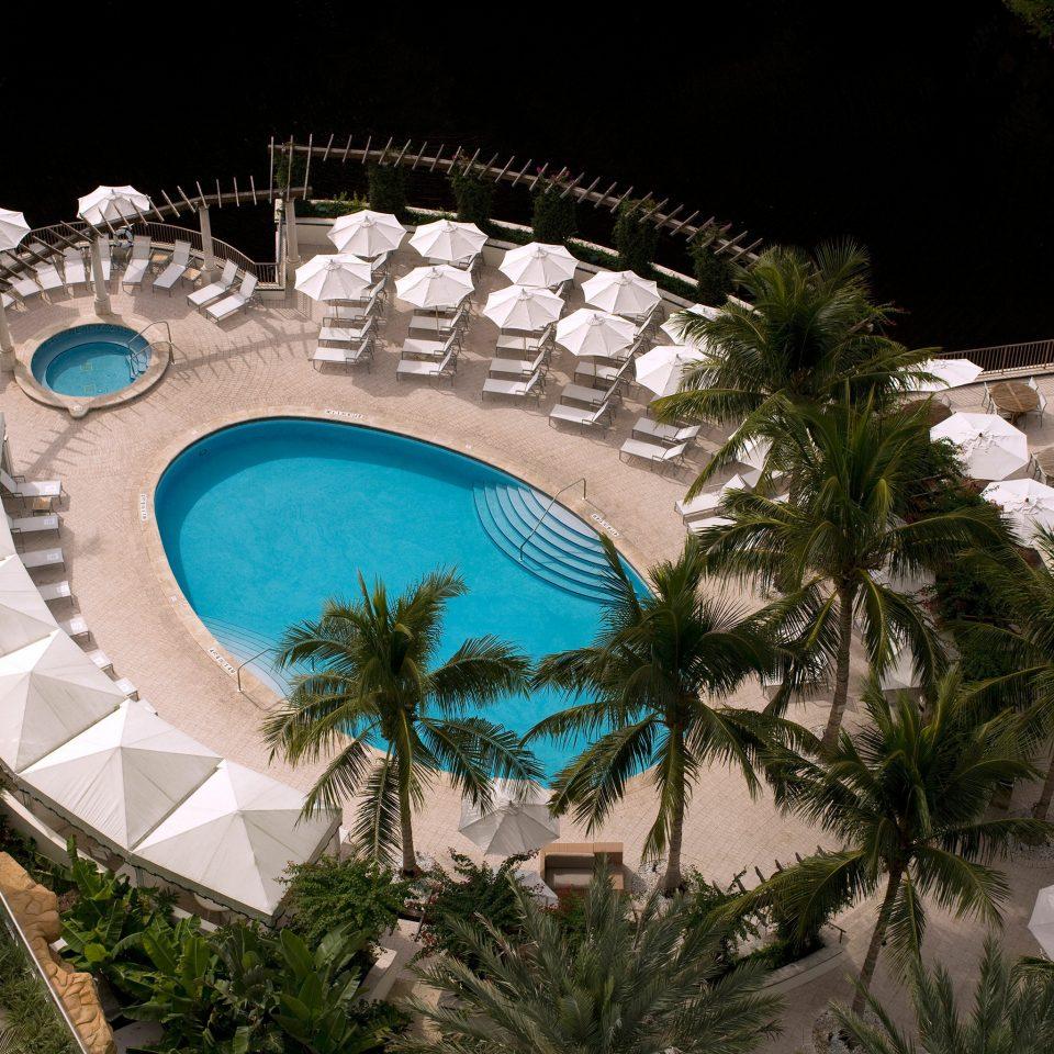 Outdoors Patio Pool amusement park swimming pool Resort park christmas decoration plant Garden arch