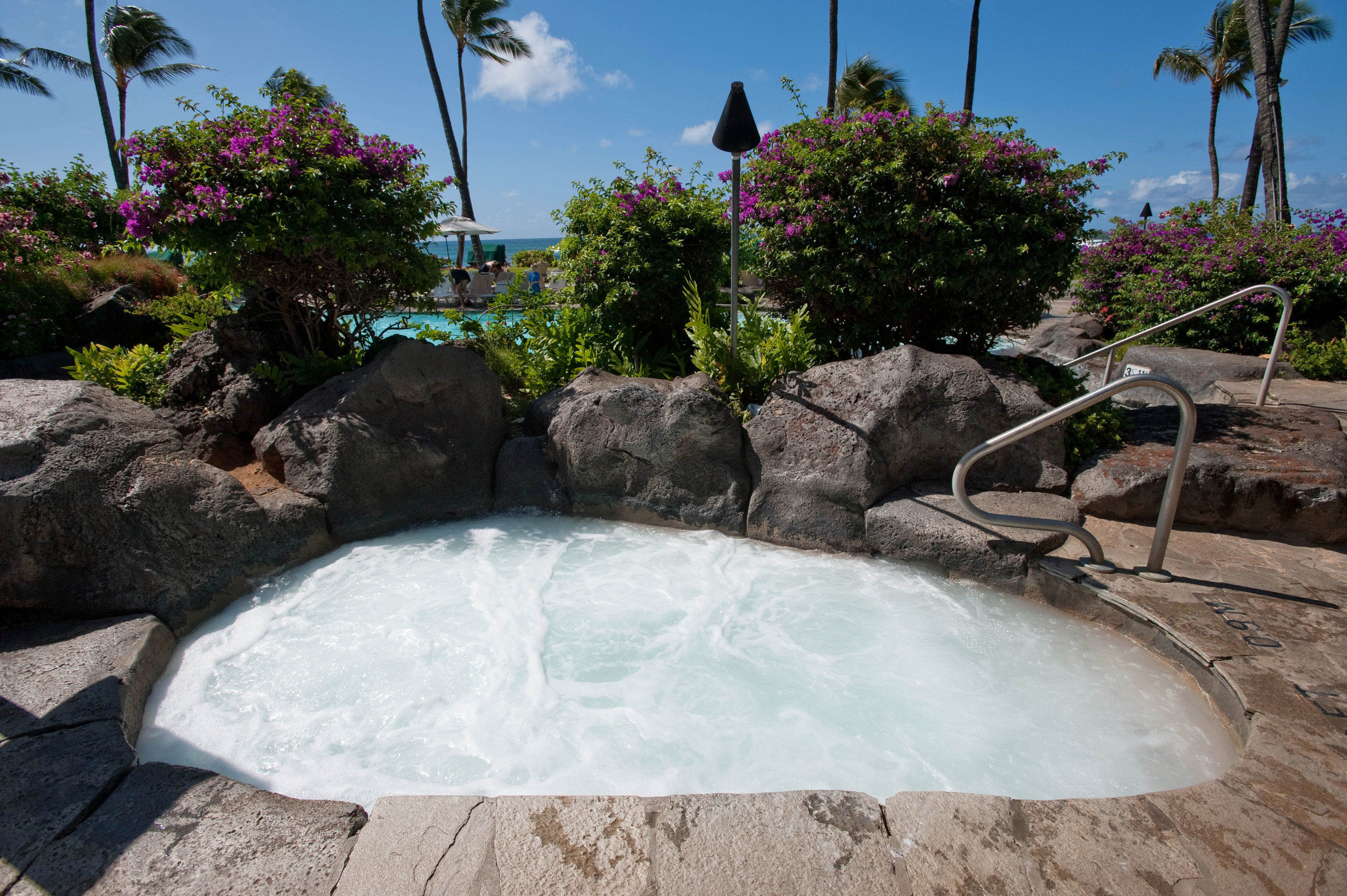 tree ground rock swimming pool property backyard pond water feature Pool Garden landscaping stone