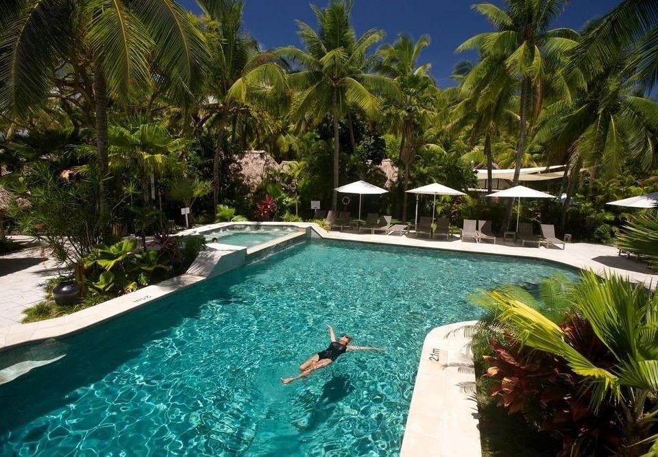 tree swimming pool leisure property Resort Pool Villa palm resort town caribbean plant backyard swimming Garden